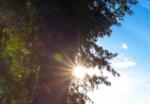 Klimaatadaptatie: antwoord op de bedreiging van het klimaat op onze economie