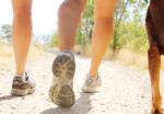 Ga met ons op pad deze zomer! | Ondernemerswandeling De Kampina